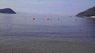 本島からの海