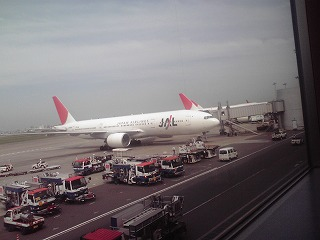 JAL機7