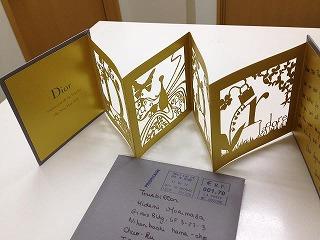 Dior card