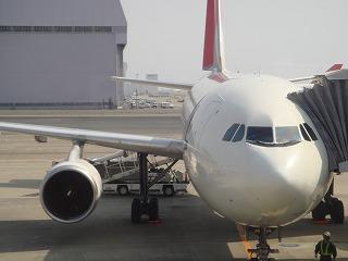 JAL機9