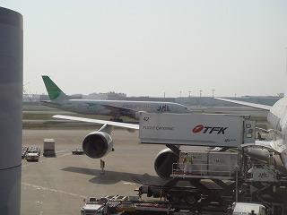 JAL機体4